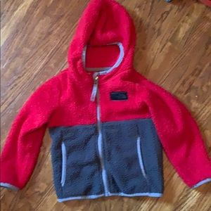 Toddler Boys North Face Hoodie